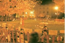 Image of Postcard - Night photo of pumpkins on Courthouse lawn