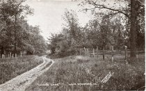 """Image of """"Lovers' Lane"""" near Sycamore"""