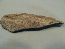 Image of Artifact -
