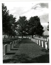 Image of 2010-7528 - Photograph