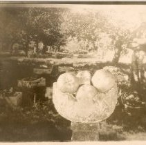Image of W.2000.34.1g - Photograph