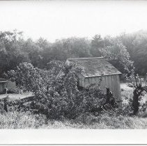 Image of W.1997.8.1bb - Photograph