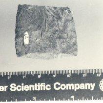 Image of N.2010.2.7 - Artifact, Unidentified