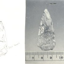 Image of N.2010.3.30 - Arrowhead