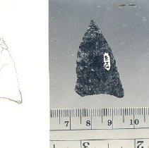 Image of N.2010.3.42 - Arrowhead