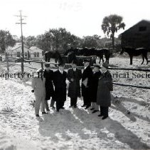 """Image of Beach Patrol Horses - Captioned on front; 1943: Beach Patrol. Shows group of officers and civilians in overcoats and hats standing in and path in front of a group of more than 6 horses in paddock behind them. House and barn, utility pole, grove of trees nearby. On reverse: 1943: written in ballpoint pen: navy Manpower Survey Group checks coast guard activities; Survey Group is from Sixth Naval District. Individuals identified: L to R: Ens. T.L. Belton, USCGR, Co of Fernandina-Jacksonville Area Beach Parol; Lt. W. L. McNevin USNR; LCDR. H.H. Heine, USNR, XO, Insp. OFC. Naval Material, Atlanta, GA, Mr. Priestly Conyers, VT Taylor Colquitt CO. Spartanburg, S.C. LCDR R.W. Thresher, USCGR CPT of the Port, Wilmington, NC; CDR M.R. Sanders, USNR, CO. naval Section Base, Mayport; Mr. A. E. Jones, Gen. MGR. Tidewater Power Co., Wilmington, NC. (This information is repeated in carbon typescript on next album page as caption of """"Official U.S. Navy Photo"""" by Asst. Dist. Public Relations Officer Sixth naval District)"""