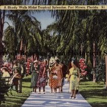 Image of A Shady Walk Midst Tropical Splendor, Fort Myers, Florida - A Shady Walk Midst Tropical Splendor, Fort Myers, Florida Fort Myers was named in honor of Col. Abraham C. Myers, distinguished veteran of the Mexican War and quartermaster of the War Department in Florida. It has become a rendezvous for Yachtsmen and fishermen, and tourists in large numbers throng its beautiful avenues the year round.   Color illustration