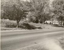 Image of Wisconsin Ave Between Chevy Chase Blvd. & Davidson - Black and White 8/10 1963.  Where Sundecks sell Christmas Trees every year. Source: Lesley Anne Simmons.
