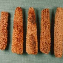Image of Corncobs - Wingfield Collection
