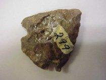 Image of 299P - 1956.001.