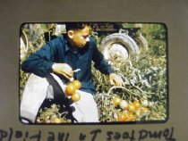 Image of 2001.004.0056 - Transparency, Slide