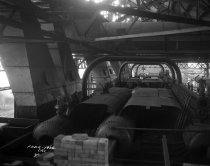 Image of cfi_pla_sho_0231 - Negative, Sheet Film