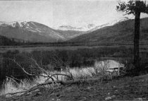 Image of CP_1902_11_29_p517a - Print, Photomechanical