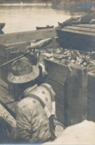 Image of 1997.090 - Loading a fish skow/barge