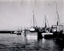 Image of 1997.094 - Purse seiners moored along Guemes Channel