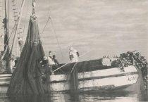 Image of 1997.107 - Bringing seine net onboard