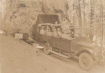 Image of 1997.289 - WAWONA tree -Yosemite Park,CA