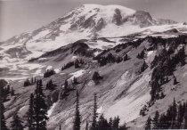 Image of Paradise Valley - Mt. Rainier