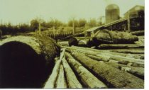 Image of Anacortes Lumber & Box Co.
