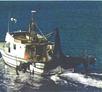 Image of APRIL DAWN fishing boat