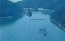 Image of (.001) Panfish USA fish farm off Cypress
