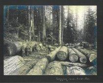 Image of logging near Anacortes