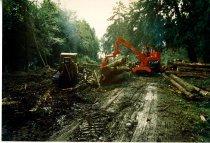 Image of Log loader stacking logs