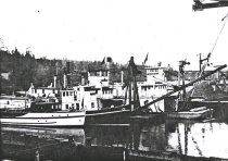Image of SWINOMISH