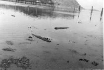 Image of Fidalgo Bay looking NE. toward Cap Sante 1958 (.004)