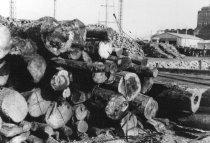 Image of Log yard (.059)