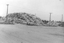 Image of Log yard 1961 (.060)
