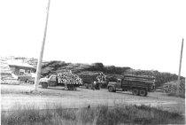 Image of Log yard truck entering scales 1960