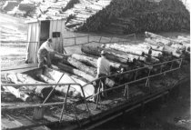 Image of Logs at mill entry chain 1959 (.069)
