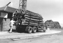 Image of Logs scaling load at scale house (.071)