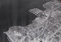 Image of Snelson-Anvil site/ aerial view of modules