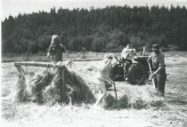 Image of Janet Trulson, Susan Trulson, Greg Summers, and Dick loading hay.