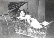 Image of Anna Schwartz Bessner - 1900