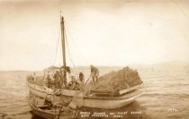 Image of D.VIII.058 - Purse Seiners - 1912