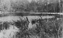 Image of Lake on Cypress Island