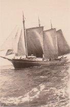 Image of AZALEA under sail