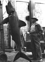 Image of L.M Ashby and mud shark (?)
