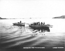 Image of Purse Seiners, Griffin Bay