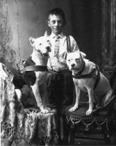 Image of Boy with dogs