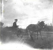 Image of Unknown man in buggy