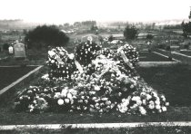 Image of WF 1384 - Cemetery - unidentified