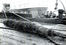 Image of WF 1706 - Guemes Channel Telephone cable accident