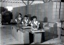 Image of WF 1937 - Tuna canning - affixing labels