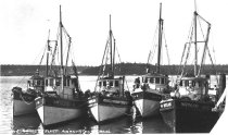 Image of Docked fishing boats