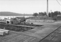 Image of Anacortes Lumber and Box mill yard