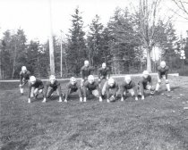 Image of 1930 football team